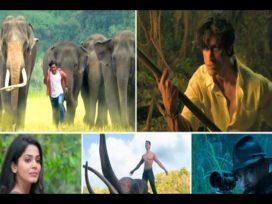 Vidyut Jammwal Junglee