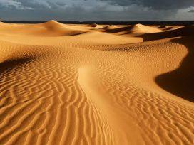 Punjab Desert