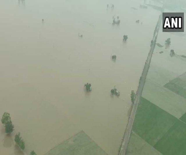 flood images