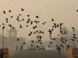 aqi-of-delhi-city