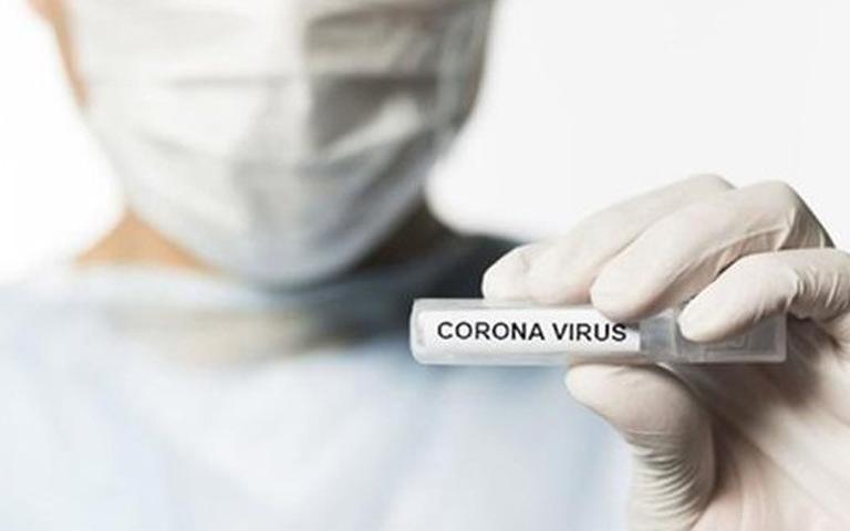 Corona in Sangrur: Corona ਦੀ ਸੰਗਰੂਰ ਵਿੱਚ ਐਂਟਰੀ, Corona ਦਾ ਪਹਿਲਾ ਪੋਜ਼ੀਟਿਵ ਕੇਸ ਆਇਆ ਸਾਹਮਣੇ