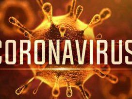 corona-virus-case-report-negative-in-barnala