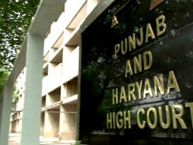 punjab-haryana-high-court-decision-on-unmarried-couple