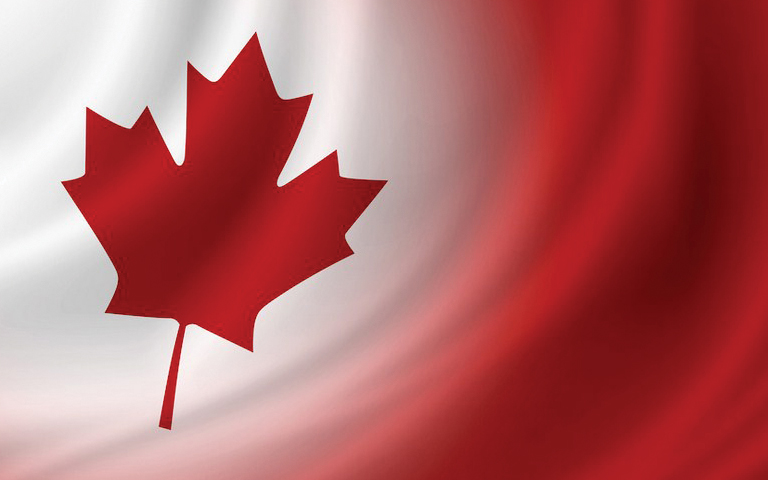Canada News: ਇਹਨਾਂ ਗ਼ਲਤੀਆਂ ਕਰਕੇ ਕੈਨੇਡਾ ਵੀ ਪੂਰੀ ਤਰਾਂ ਬਦਨਾਮ ਹੋ ਰਹੇ ਨੇ ਪੰਜਾਬੀ