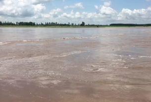 punjab flood news