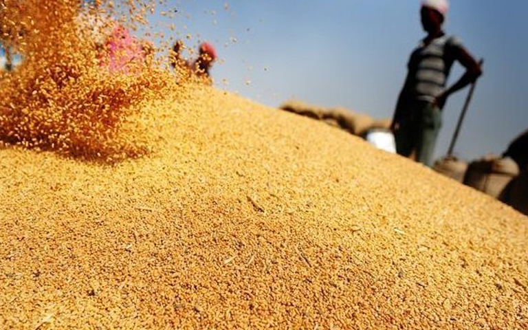 modi-govt-increase-msp-for-rabi-crops